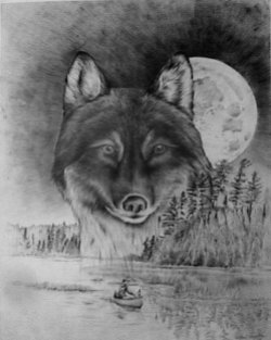 Moonlight Reflections - Timber Wolf